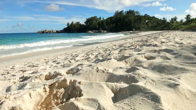 Dolly: Police Bay, Mahé island, Seychelles video