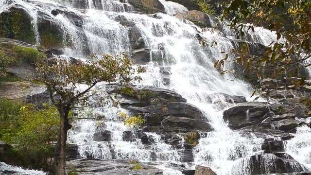 Dolly Shot: Cascade Waterfalls in Tropical Rainforests video