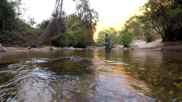 Dolly Shot: Fisherman Fly fishing video
