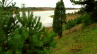 Dolly shot of landscape with trees and lake video