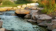 Dolly Shot of Stream with River Boulders and Plants video