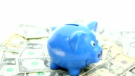 Dolly Shot: Piggy bank for Savings finance and insurance concept video