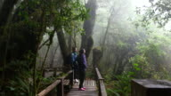 Dolly Shot:Two Hiking young woman trekking and looking a map in the rainforest video