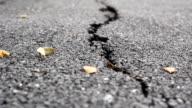 HD dolly:Road cracks. video