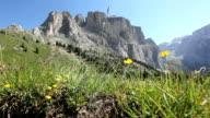 Dolomites, Passo Sella, Mountain Landscape, Italian Alps, HD Dolly video