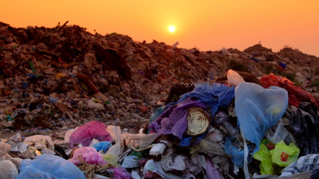 DOLLY: Domestic Garbage in Landfill video