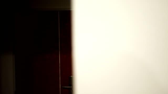 Door video