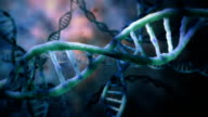 DNA double Helix video
