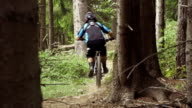 Downhill biker in the forest video