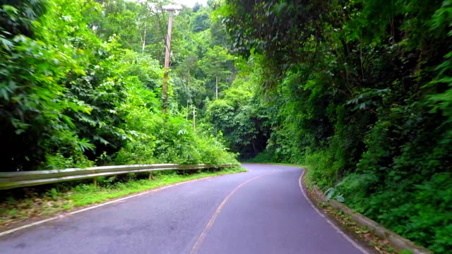Downhill Driving From Khao Yai National Park . video