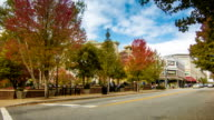 Downtown Asheville, NC's Pritchard Park in the Fall video