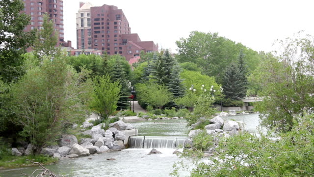 downtown calgary park video