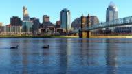 Downtown Cincinnati skyline along the Ohio River video
