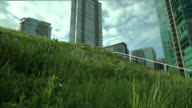Downtown Vancouver Green Roof  dolly shot video