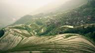 Dragon's back rice terraces of Longji video