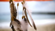 Dreamcatcher on the beach video