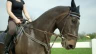 SLOW MOTION: Dressage female rider horseback riding in arena video