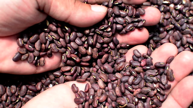 Dried beans video