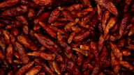 Dried red chili pepper. Kitchen herbs background video