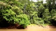 Drifting down an Amazonian river video