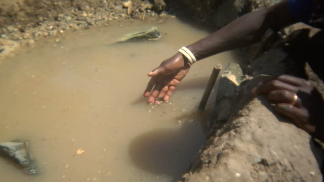 Drinking puddle in Africa video