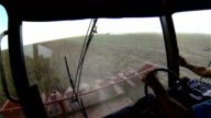 Driver with a cigarette operates a combine harvester during harvesting of sunflower video