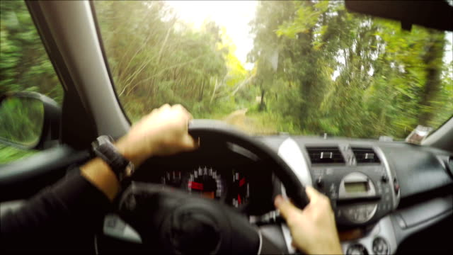 Driving a car offroad: inside view video