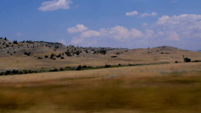 Driving along rural Montana showing hills with pine trees and grass video