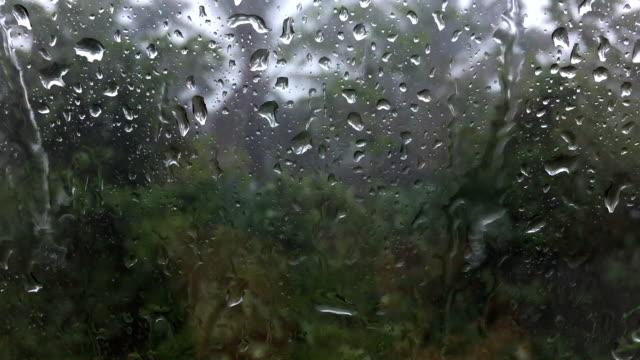 Driving car through heavy rain video