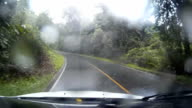 Driving Country Road in the rain forest video