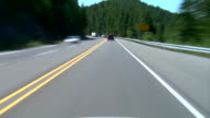 Driving Evergreen Forest video