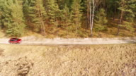 Driving in the forest Aerial shot. video