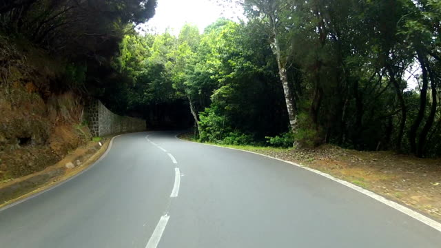 Driving in the mountains of Tenerife video