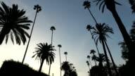 Driving in LA video