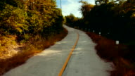 Driving on a small concrete road in the jungle video