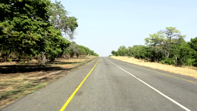 Driving on Endless road in Namibia, Caprivi Game Park video