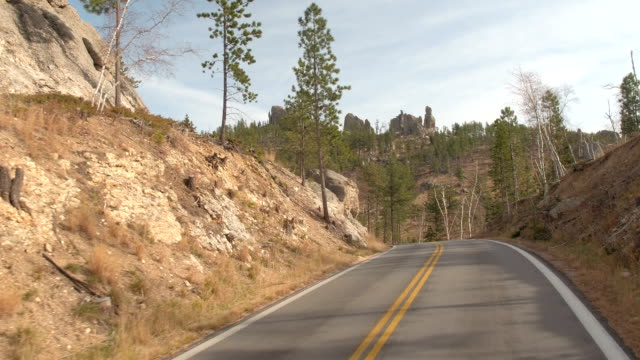 FPV: Driving on scenic mountain pass windy road in Black Hills National Forest video