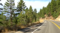 Driving Through A Scenic Forest video