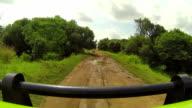 Driving through African Safari video