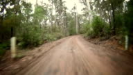 HD TIME LAPSE: Driving Through The Forest video