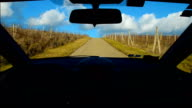driving trip on road through vineyards in Tuscany Italy video