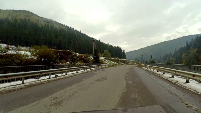 Driving Winding Road in Mountains through Forest video