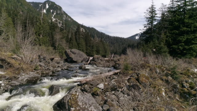 Drone Flying Upstream to Reveal Peaceful Alpine Lake on Pacific Northwest Mountain Hiking Trail Destination video