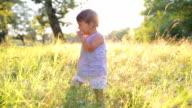 Drop in grass. video