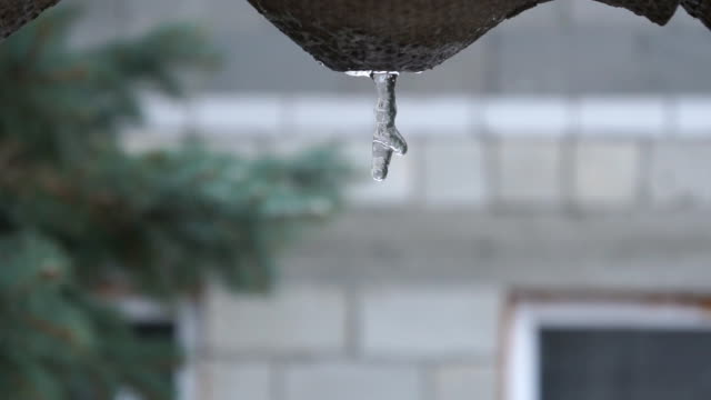 drop of water dripping icicle melts, springtime video