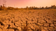 Drought disaster. red filter video