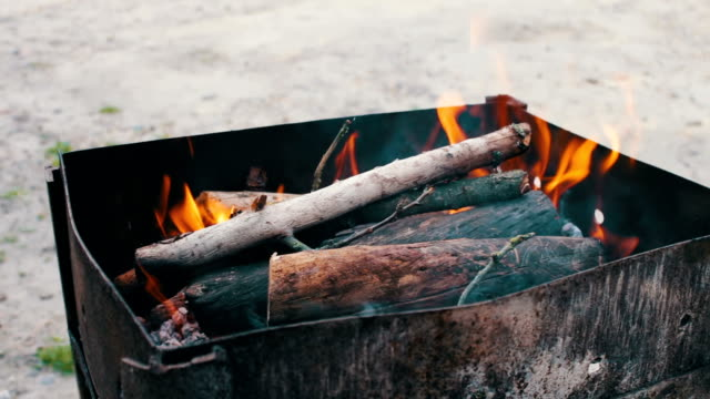 Dry branches burn in the grill in nature video