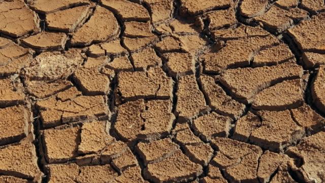 Dry cracked soil in a desert video