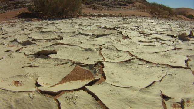 Dry ground_trockener_Boden video