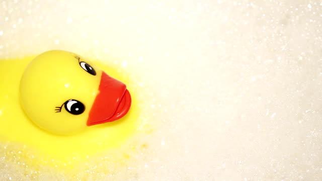 Duck in the bathroom video